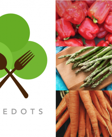 Top 5 Reasons Why Businesses Buy From TreeDots
